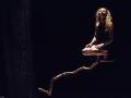 Hêtre-nuit-oiseau-Photo-J-C Chaudy-HD1825x1363